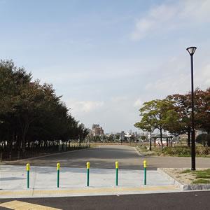 5.5haの広大な川名防災公園はお散歩にもぴったり